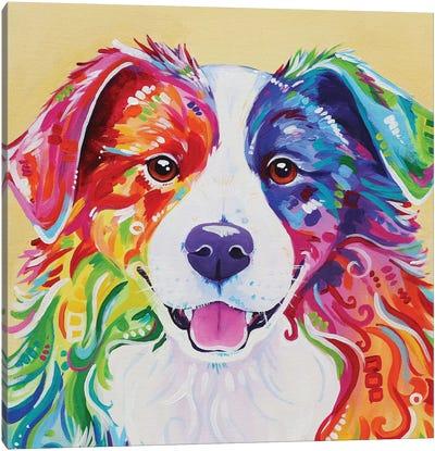 Toby Canvas Art Print