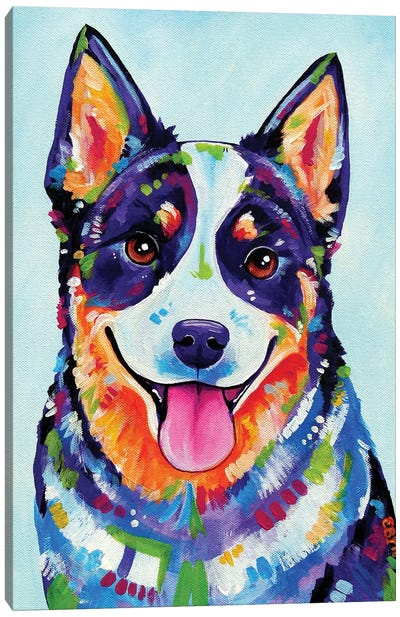 Australian Cattle Dog Canvas Art Print