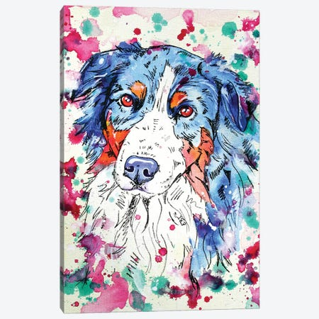 Australian Sheperd I Canvas Print #EIZ56} by Eve Izzett Canvas Print