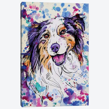 Australian Shepherd III Canvas Print #EIZ57} by Eve Izzett Canvas Art Print