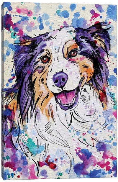 Australian Shepherd III Canvas Art Print