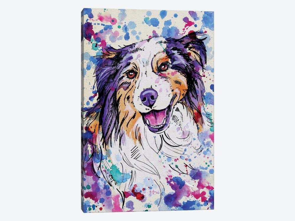 Australian Shepherd III by Eve Izzett 1-piece Canvas Art