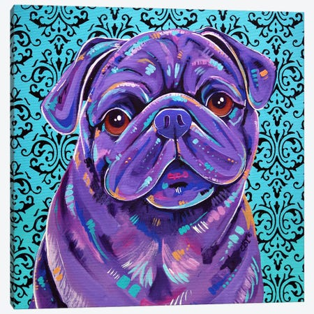 Boof Canvas Print #EIZ59} by Eve Izzett Canvas Art