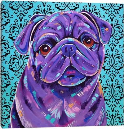 Boof Canvas Art Print