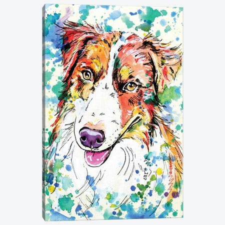 Border Collie I Canvas Print #EIZ60} by Eve Izzett Canvas Print