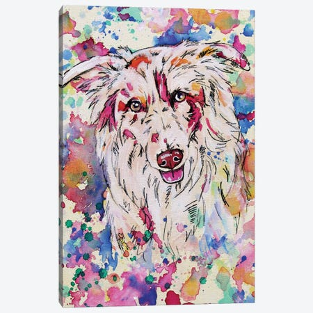 Border Collie II Canvas Print #EIZ61} by Eve Izzett Canvas Art Print