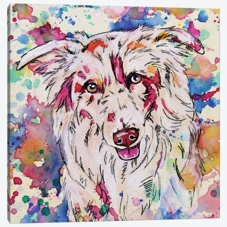 Border Collie II - Square Canvas Print #EIZ62} by Eve Izzett Canvas Print
