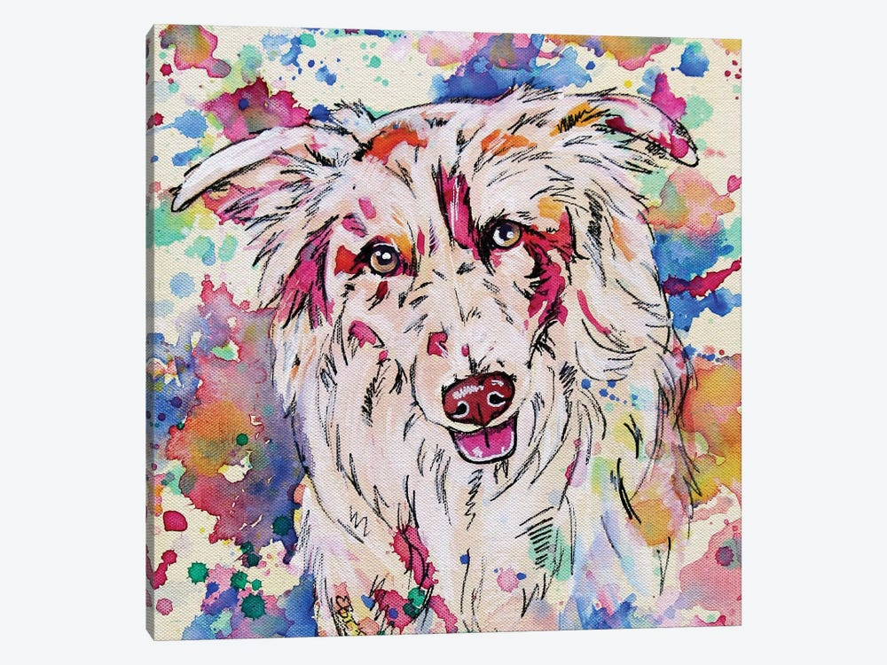 Border Collie II - Square by Eve Izzett 1-piece Canvas Art