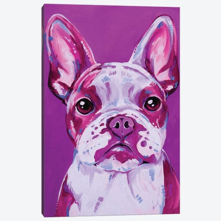 Frenchy In Pink Canvas Print #EIZ64} by Eve Izzett Canvas Wall Art