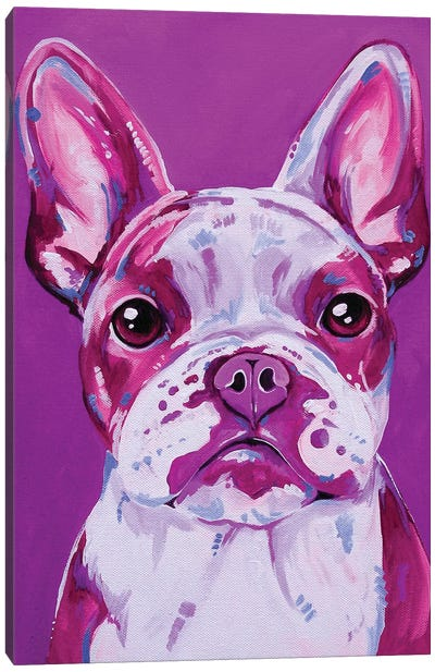 Frenchy In Pink Canvas Art Print