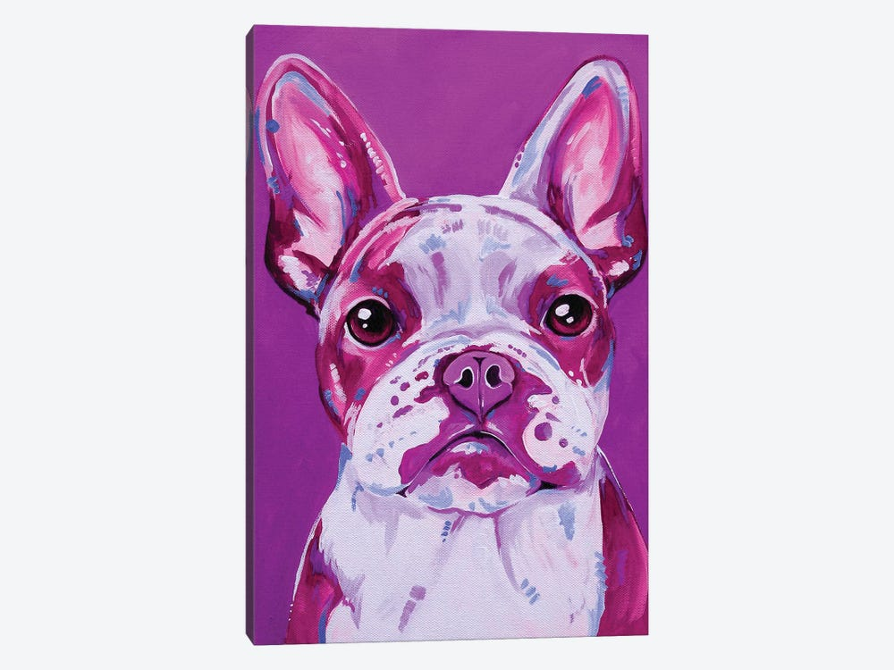 Frenchy In Pink by Eve Izzett 1-piece Canvas Wall Art