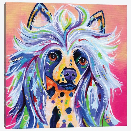 Iggy Canvas Print #EIZ65} by Eve Izzett Canvas Artwork