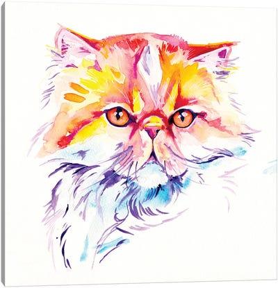Persian Canvas Art Print