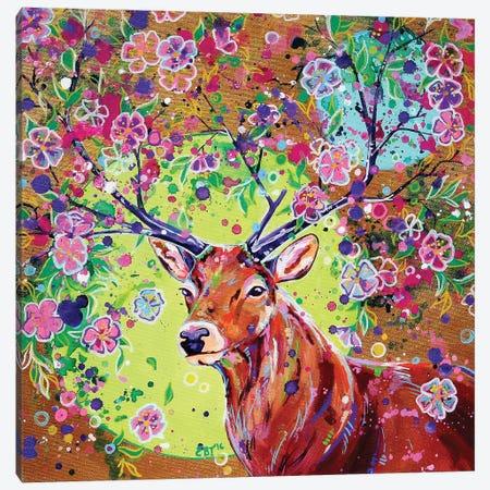 Spring Herald Canvas Print #EIZ67} by Eve Izzett Canvas Wall Art