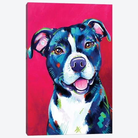 Milly - Portrait Of A Staffy Canvas Print #EIZ70} by Eve Izzett Canvas Art