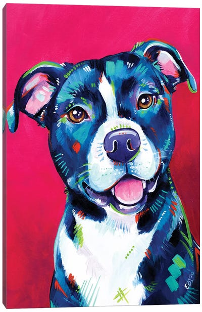 Milly - Portrait Of A Staffy Canvas Art Print