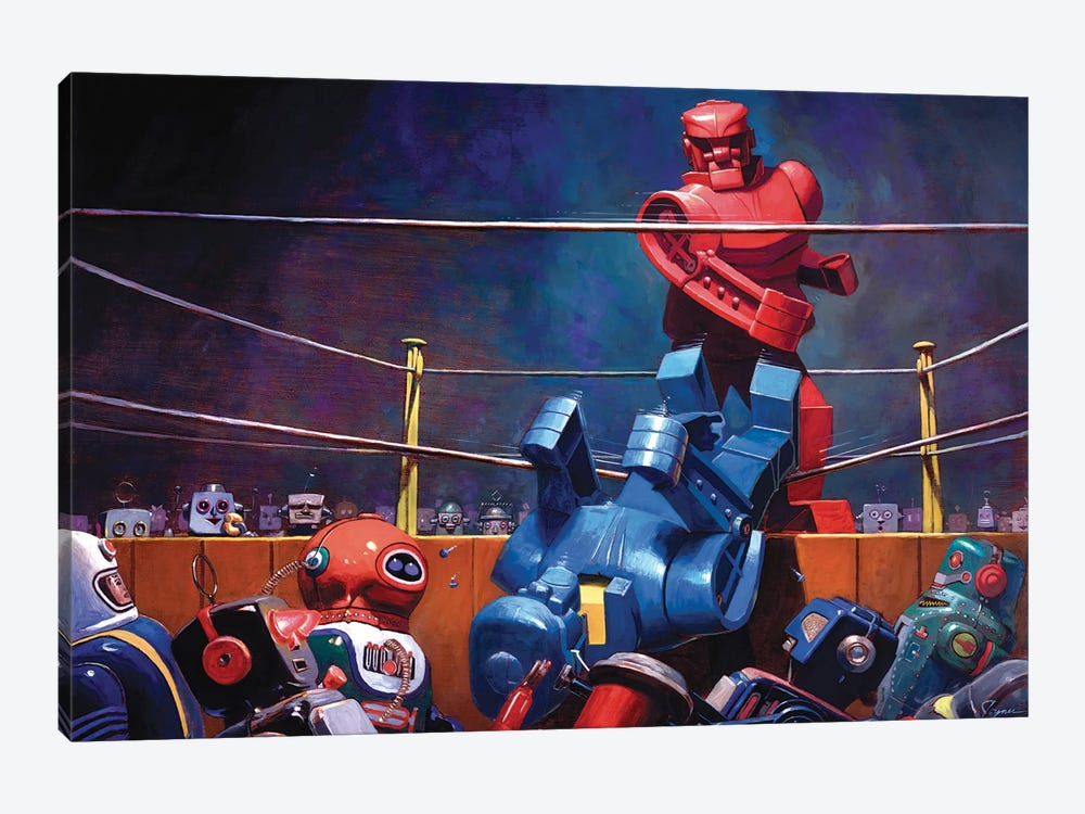 Roc Sock by Eric Joyner 1-piece Canvas Wall Art