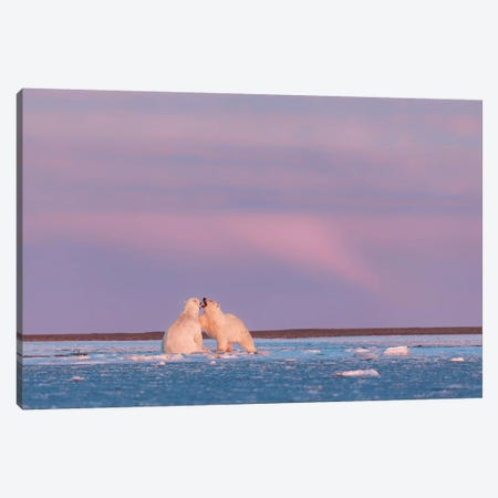 Arctic Color Canvas Print #EJT4} by Eiji Itoyama Canvas Art Print