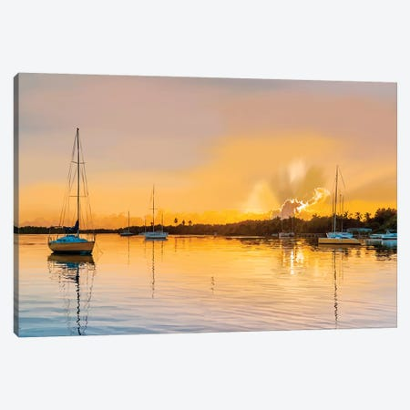 In the Golden Light IV Canvas Print #EKA64} by Emily Kalina Canvas Wall Art
