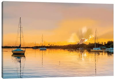In the Golden Light IV Canvas Art Print