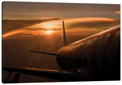 Out Of The Flight Canvas Art Print