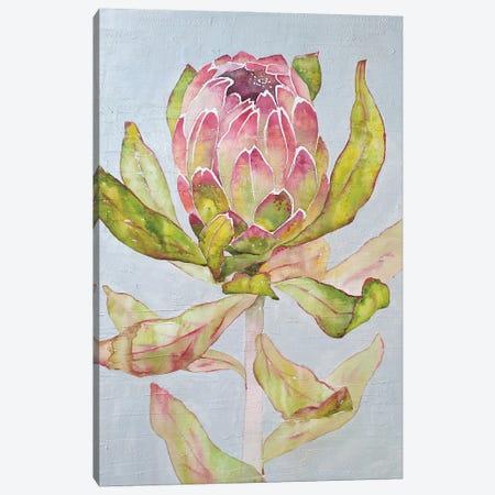 Protea Canvas Print #EKP18} by Ekaterina Prisich Canvas Art Print