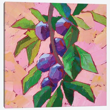Plum Branch Canvas Print #EKP39} by Ekaterina Prisich Canvas Art Print