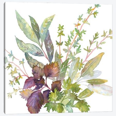 Bouquet Garni Canvas Print #EKP57} by Ekaterina Prisich Canvas Wall Art