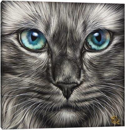 Blue Stare Canvas Art Print