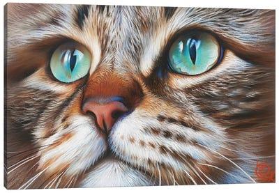 Cat's Face Canvas Art Print