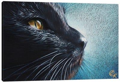 Thoughtful Cat Canvas Art Print