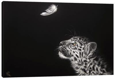 Feather Hunt Canvas Art Print