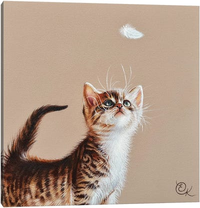 Kitten And Feather Canvas Art Print