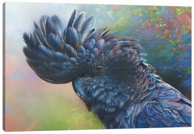 Black Rainbow Canvas Art Print