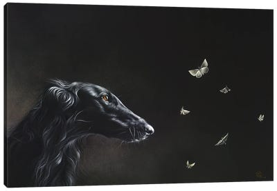 Tender Is The Night Canvas Art Print