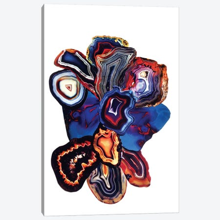 Earth Elements Canvas Print #EKU24} by Elena Kulikova Canvas Art