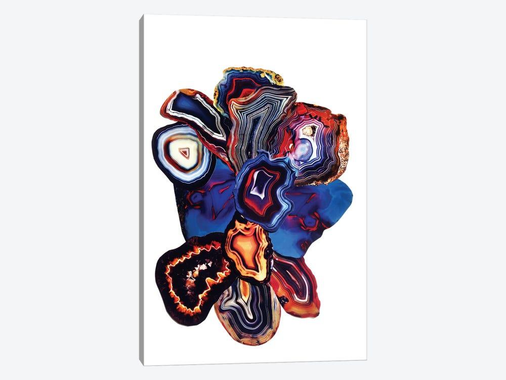 Earth Elements by Elena Kulikova 1-piece Canvas Artwork
