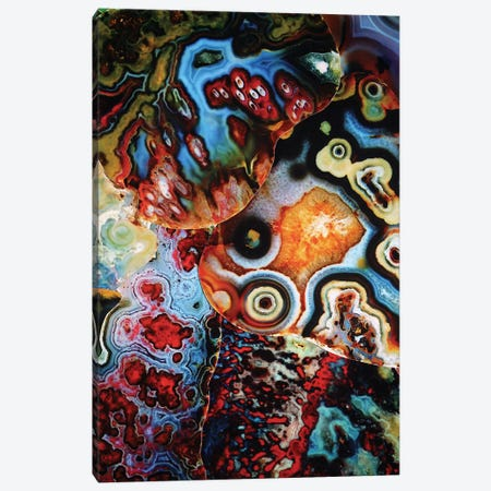 Earth's Imagination Canvas Print #EKU26} by Elena Kulikova Canvas Artwork
