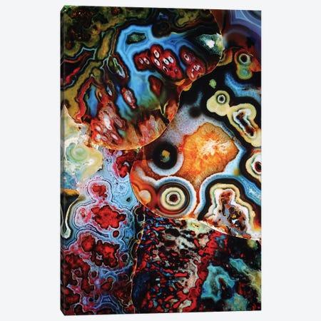 Earth's Imagination Canvas Print #EKU26} by Elena Kulikova Canvas Artwork