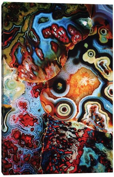 Earth's Imagination Canvas Art Print