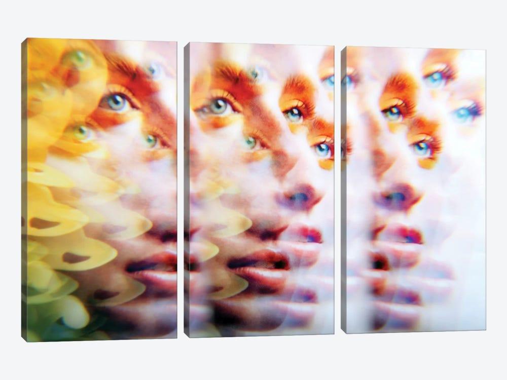 Eyes Like Butterfields by Elena Kulikova 3-piece Art Print