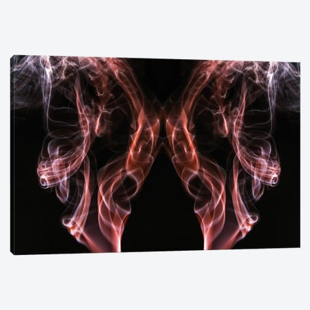 Beauty Of Aerodynamics, Copper Canvas Print #EKU3} by Elena Kulikova Canvas Wall Art
