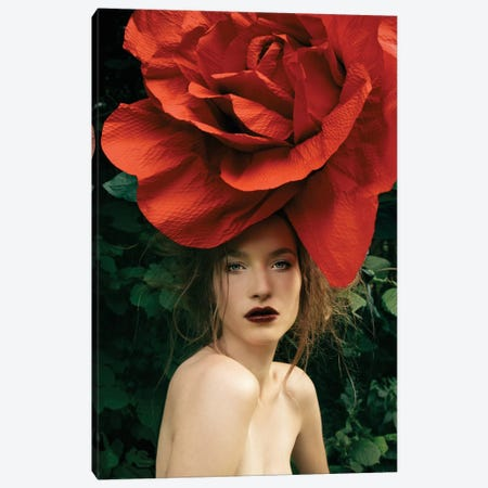 Lady Rose Canvas Print #EKU41} by Elena Kulikova Canvas Print