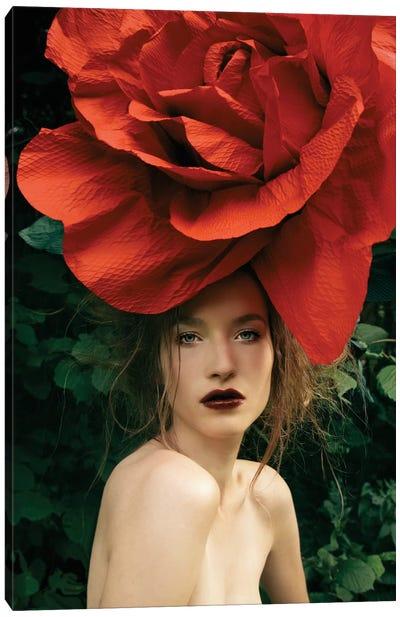 Lady Rose Canvas Art Print