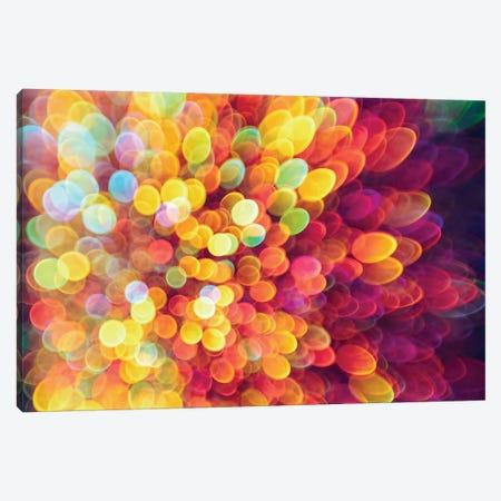 Ligth And Shimmer Burst Canvas Print #EKU44} by Elena Kulikova Canvas Artwork