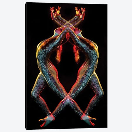 Metallic Rainbow Dancer Canvas Print #EKU48} by Elena Kulikova Canvas Print