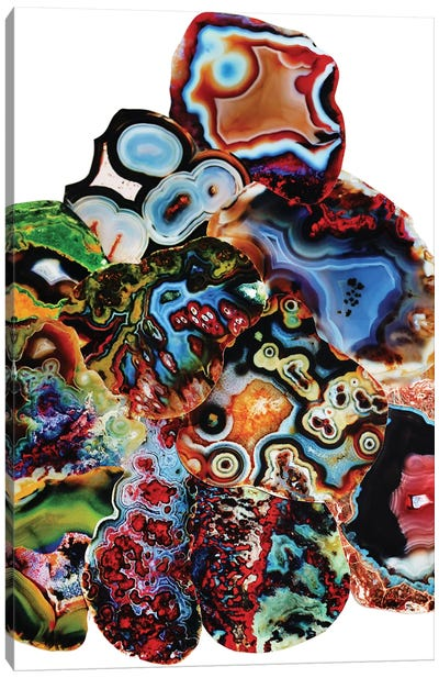 Metamorphic Layers Of Earth Canvas Print #EKU50