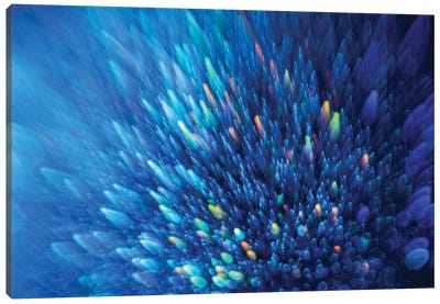 Blue Stardust Canvas Art Print