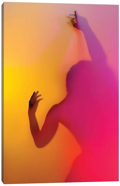 Rainbow Lover II Canvas Art Print