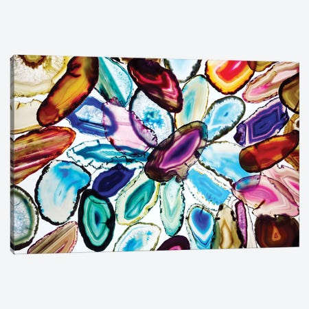 The Vibrant Slices Of Earth Canvas Print #EKU98} by Elena Kulikova Canvas Art